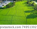 Land plot, green field and house in aerial view. 74951302