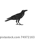 Vector of crow design isolated on white background. Easy editable layered vector illustration. Black Birds. Wild Animals. 74972163