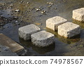 Stepping stone 74978567