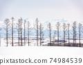Biei, Japan Winter Scenes 74984539