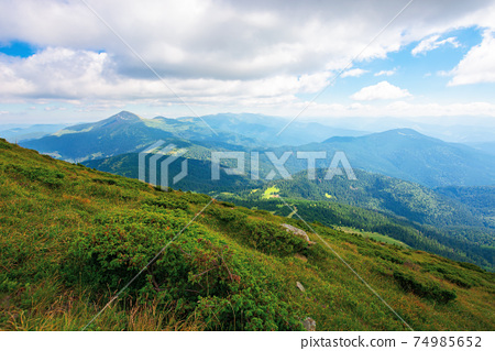 hoverla peak of carpathian black ridge. beautiful summer landscape at noon. clouds on the sky above the valley. view from petros mountain slope covered in grass 74985652