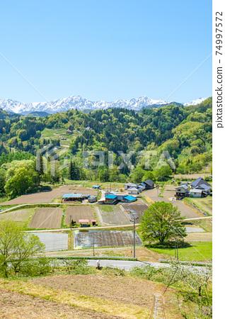 清新的綠色山村風光 74997572