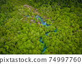 Aerial view image of Tha Pom Klong Song Nam mangrove forest or Emerald pool is unseen pool in mangrove forest at Krabi, Thailand 74997760