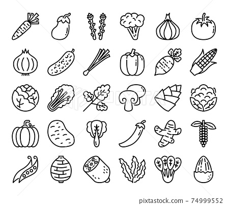 Vegetable Outline Vector Icons 74999552