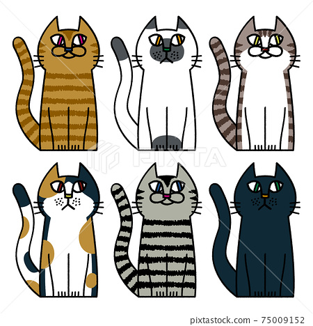 貓模式動物寵物生物 75009152