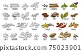 Set spices. Vintage vector engraved illustration isolated on white 75023901