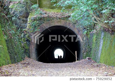 廢棄的鐵路步行隧道 75029852