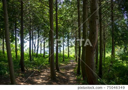 한려해상국립공원,통영시,경남 75046349