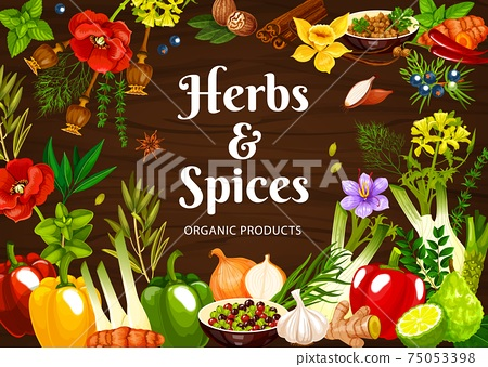 Herbs and spices cartoon vector poster, seasonings 75053398