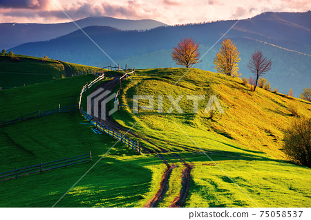 path winding through rural field on hill. wooden fence and trees along the way. fluffy clouds above the distant ridge in evening. wonderful countryside landscape in spring at sunset 75058537