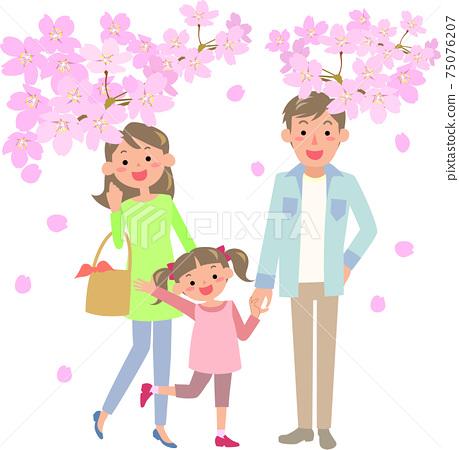 벚꽃을 보러 나가는 가족 75076207