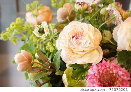 White ranunculus with red border 75076208