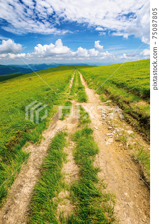 path through green grassy mountain meadow. beautiful summer landscape. fine weather with fluffy clouds on the blue sky 75087805