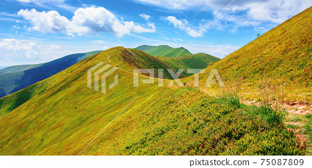path through borzhava ridge. beautiful summer nature landscape of carpathian mountain. green hillside meadows beneath a blue sky with clouds. stoj peak in the distance 75087809