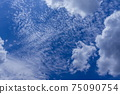 Cirrocumulus and cotton cloud sky 75090754