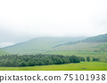 Scenic Landscape View of Mountain Forest with Fog, in Scottish Highland. 75101938