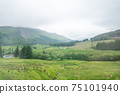 Scenic Landscape View of Mountain Forest with Fog, in Scottish Highland. 75101940