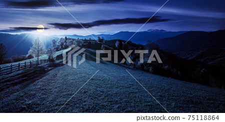 trees behind the fence on the grassy meadow at night. spring rural landscape in full moon light. distant mountain ridge beneath a bright sky with fluffy clouds 75118864