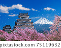 Fuji mountains and castle with cherry blossom in spring, Japan. 75119632