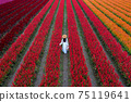 Beautiful girl in white dress travel at Celosia flowers fields, Chiang Mai. 75119641