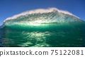 Ocean Wave Swimming Encounter Backlighting 75122081
