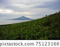 여름의 홋카이도 레 분도의 꽃밭에서 볼 리 시리 후지 75123166