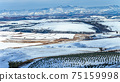 Mountains Valley Snow Panoramic Landscape 75159998