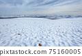 Mountains Plateau Snow Panoramic Landscape 75160005