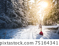Mother pulling baby on a sled through winter forest. 75164341