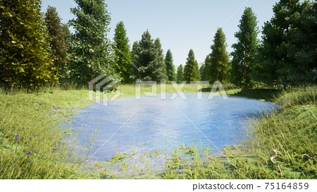 Nature on the shores of the lake 75164859