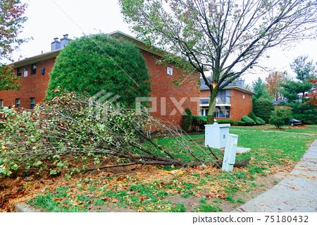 Hurricane flood and wind damage 75180432