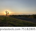 Dusk River Park 75182805