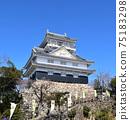 藍天和岐阜城堡 75183298