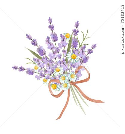 薰衣草和洋甘菊的香味 75183415