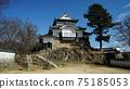 Bicense Matsuyama Castle 75185053