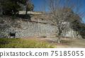 Bicense Matsuyama Castle 75185055