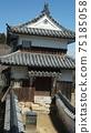 Bicense Matsuyama Castle 75185058