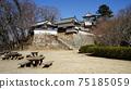 Bicense Matsuyama Castle 75185059