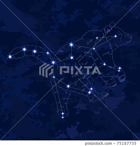 88星座系列B-星座圖和星座線-Ursa Major 75187735