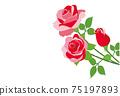 紅玫瑰花朵背景素材 75197893