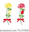 紅玫瑰和黃玫瑰花束套 75197898
