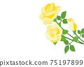 黃玫瑰花朵背景素材 75197899