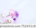 핑크와 보라색의 예쁜 딸 75203316