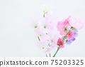 핑크와 보라색의 예쁜 딸 75203325