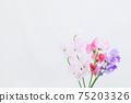 핑크와 보라색의 예쁜 딸 75203326