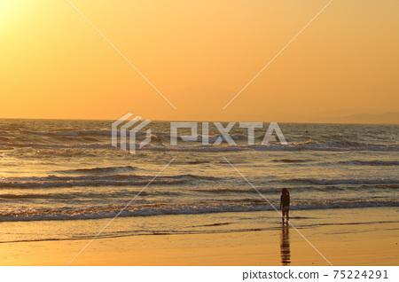 獨自站在海中黃昏(剪影)的女孩 75224291