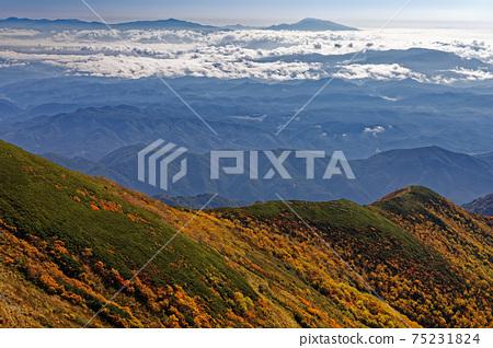 從Jiigatake看的秋天的山脊和淺間山 75231824