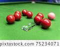 Snooker 75234071