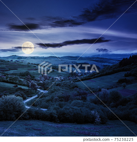 carpathian countryside in spring at night. beautiful rural landscape in mountain. wet grassy meadow in full moon light. road winding through valley to village. distant ridge in the clouds 75238225
