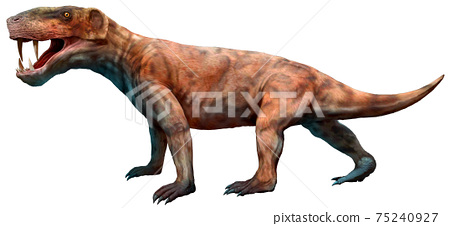 3d, canines, extinct 75240927